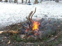 Lin pieczony w glinie z ogniska